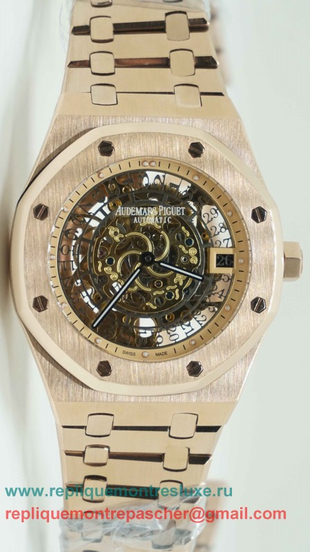 Audemars Piguet Automatique Skeleton S/S APM101